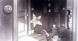 Cat & Star
